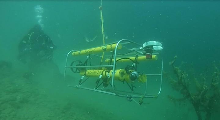 ROV and diver